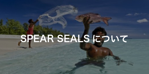 SPEAR SEALSについて